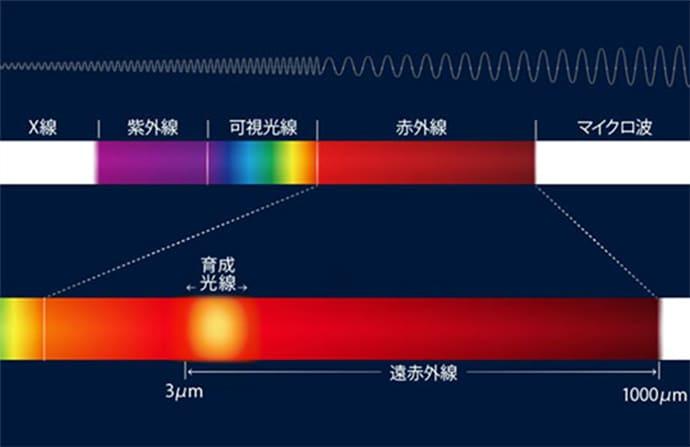 テスコム ドライヤー プリヴェニーク 遠赤外線 育成光線