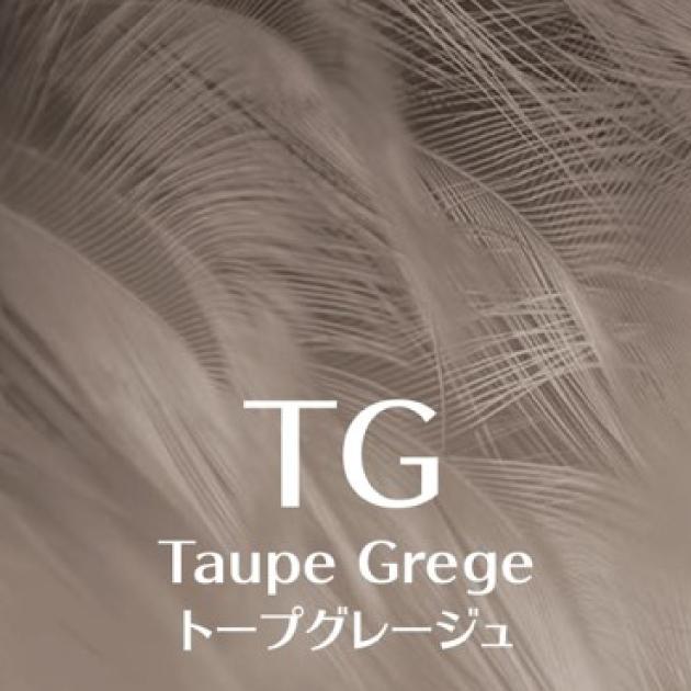 アルティストのトープグレージュ(TG)